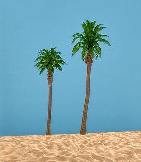 2 Kokospalmen, hellgrün, 11 cm + 14 cm